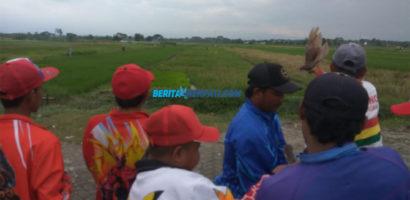LJB'19 Pasuruan Pindah di Lap Bokir Kraton